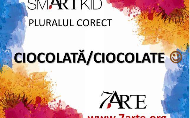 Scriem #pluralulcorect: Ciocolată - Ciocolate 13