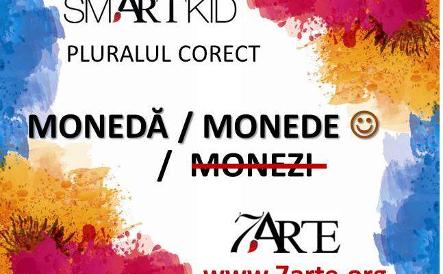 Scriem #pluralulcorect: MONEDĂ / MONEDE 7